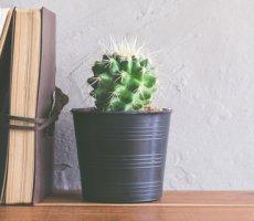 «Проблемные» сотрудники: категории и последствия для бизнеса